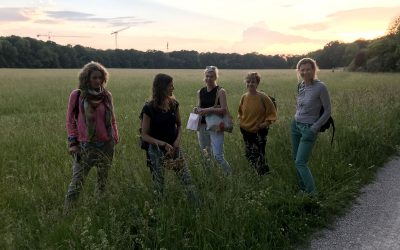 Wildkräutergruppe