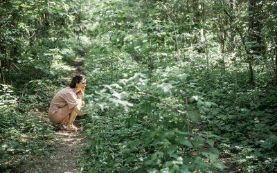 Wildkräuterspaziergang